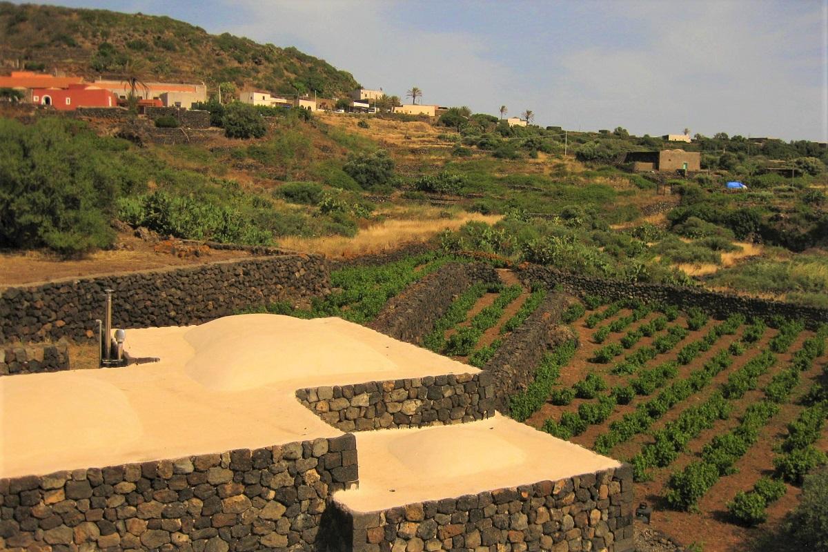 Viti e muri a secco a Pantelleria. Credits: Ph. Andrea Di Bella