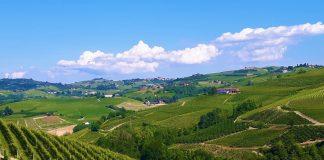 Paesaggio italiano del vino. Credits: Ph. Andrea Di Bella