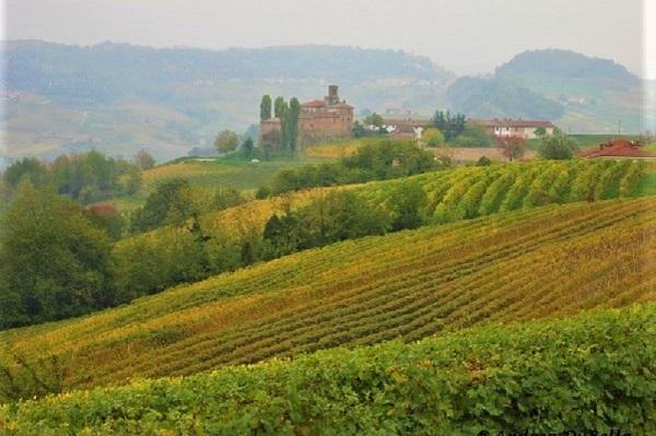 Castello della Volta a Barolo. Credits: Ph. Andrea Di Bella