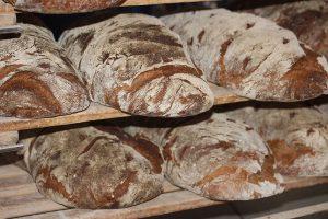 Pane di Altopascio
