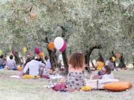picnic a Terre Giunchi