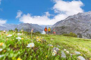 Paradiso Alpino