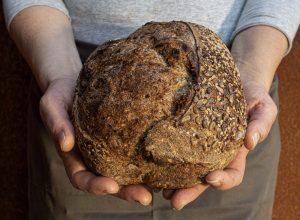 Il pane di Mollica