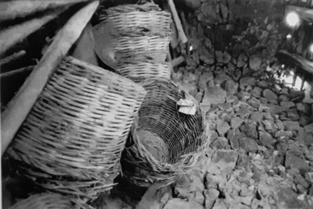 Ceste per raccogliere l'uva. Credits Ph. Sebastiano Costanzo